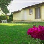 Esterno Villa Airone
