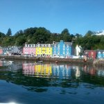 The lovely Tobermory