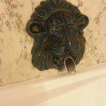 Badkarsvatten genom lejonets gap