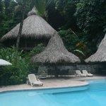 Pool & Ceiba tree lodge