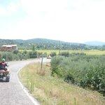 Umbria in quad