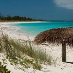 Tippy's Beachfront