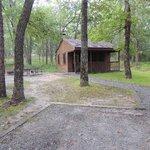 Cabin #29