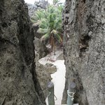 32 steps to the secluded chasm