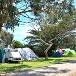 Apollo Bay Recreation Reserve camping sites on the river
