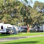 Apollo Bay Recreation Reserve shady powered sites