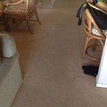 sample carpet stains