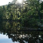 Pike's pond