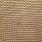 Brown spot on shower curtain (near toilet)