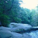 Beautiful trail
