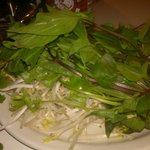 Fresh Thai Basil, bean sprouts, cilantro (to add to soup)