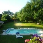 Espace piscine / jardin