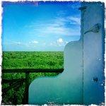la douche exterieure avec vue sur la mangove