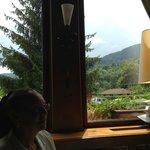 vue panoramique depuis notre table