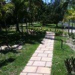 Il giardino per andare alle camere