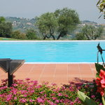 View of Tuscan countryside from swimming poookl