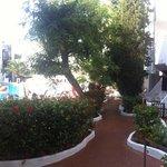 beautiful flowery walkways to pool area
