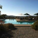 The wonderful salt water pool