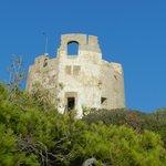 Chia La Torre