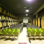 Vigne Surrau - Sala Convegni