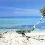 spiagge del luogo