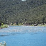 Trout Creek Flies and Green River Outfitters - Day Trips