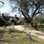 Animals roam freely through Lodge grounds