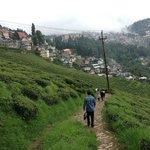 A walk through Happy valley