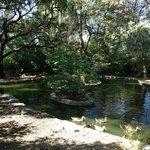 L'île aux canards: un paradis pour les enfants