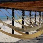 Punta Sur beaches -Cozumel Nature