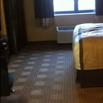 Extended Stay - Room Rug -  Hillside, IL