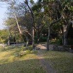 Kubu Cabins