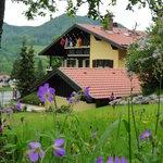 View from Gästehaus_Bed&Breakfast Zeranka in Ruhpolding