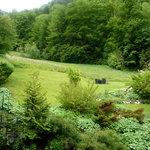 Garten-garden Gästehaus_Bed&Breakfast Zeranka in Ruhpolding