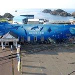 とても楽しい水族館でした。