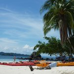 Coiba Granito de Oro with Fluid Adventures Panama