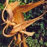 Chelsea Birds