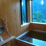 Japanese-style bathroom with an amazing view