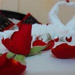 Honeymoon bed make up