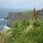 Cliffs of Mohers - vy mot norr