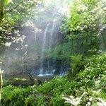 Magical Bilsdean Waterfall