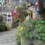 The lovely courtyard garden