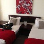 Room 2b twin