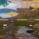 le gazon 2 aprés une chute de pluie