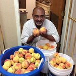 Mr. Patel with peaches he & his sons picked from the trees in the back!
