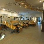 北海道海鳥センター内観。