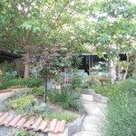 Jardin au calme chambre hôte beziers