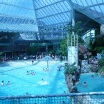 piscine troppicale