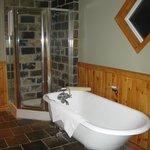 premier bath tub