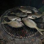 Rica parrillada de pescado
